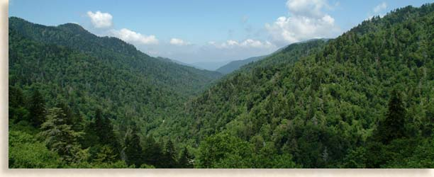 Little Pigeon River Overlook - Smoky Mountain Tennessee