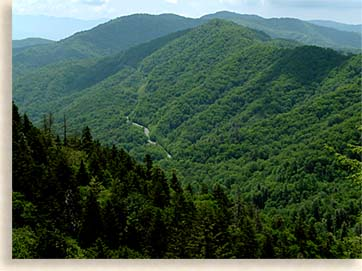 Newfound Gap Road Overlook