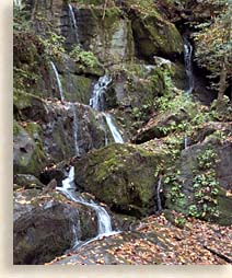 waterfall in Roaring Fork Nature Trails