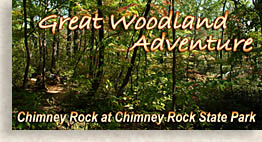 Great Woodland Adventure at Chimney Rock State Park