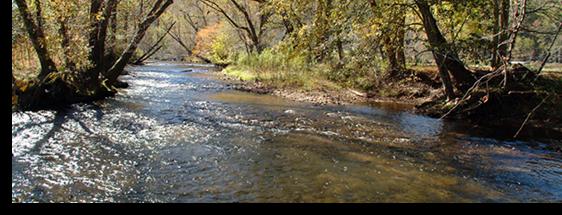 Hiawassee River In The North Georgia Mountains
