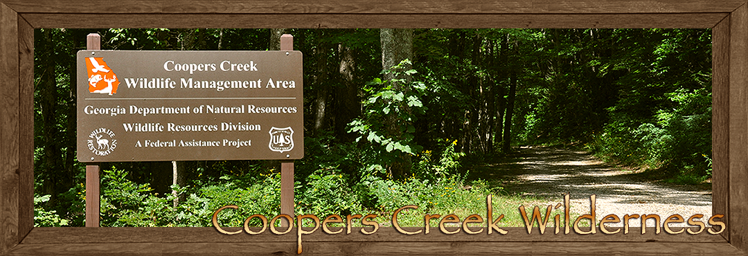 Coopers Creek Wilderness Trails